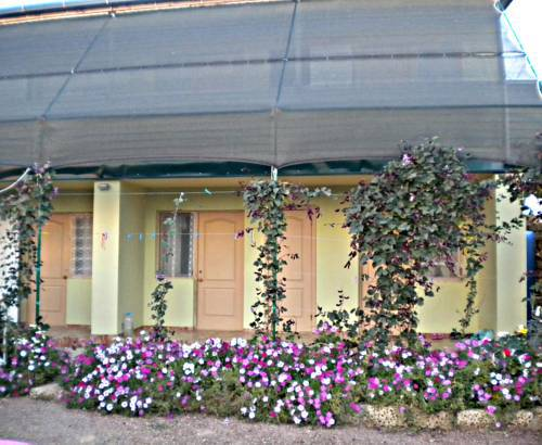 саки улица цветочная 5